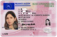 EU Führerschein - Muster